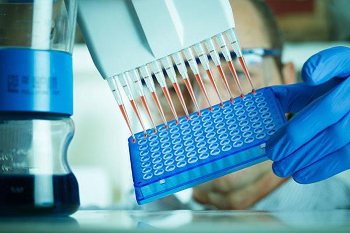 Diagnostyka genetyczna w Katowicach
